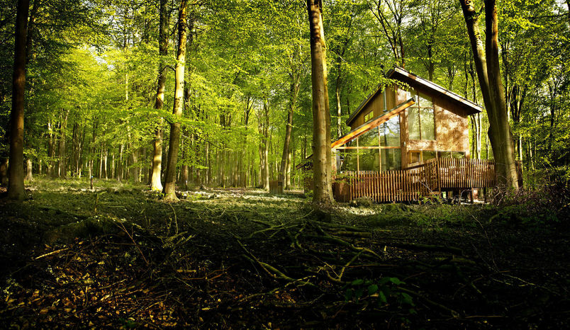 Luxury Cabin at Blackwood Forest, Blackwood Forest