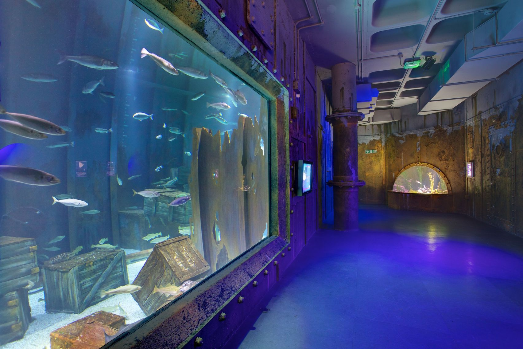 Exclusive Venue Hire, Bristol Aquarium
