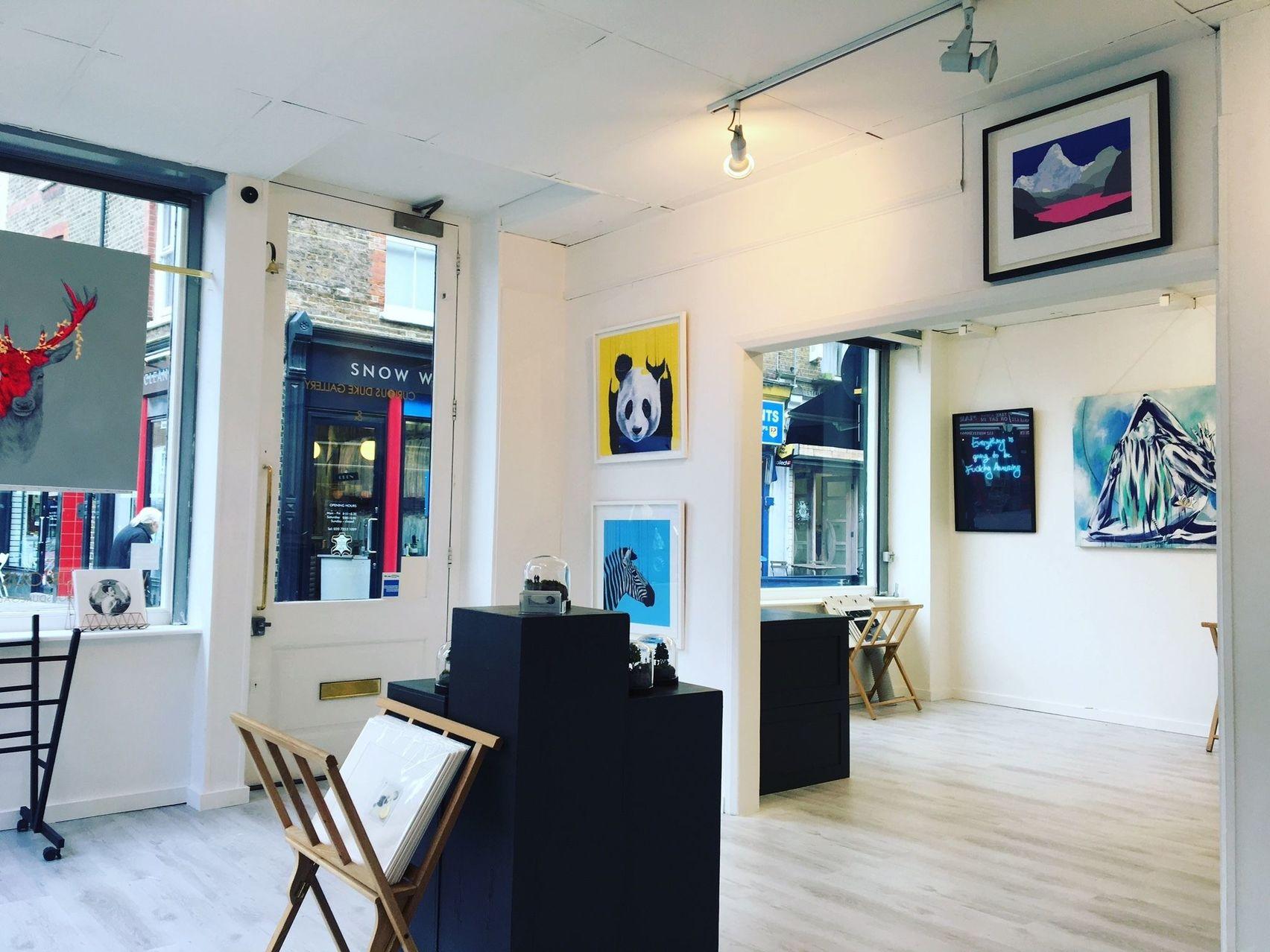 Curious Duke Gallery, Curious Duke Gallery