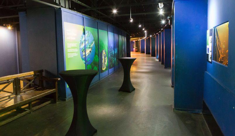 Aquarium, ZSL London Zoo