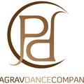 Small pagrav logo dark